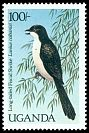 Cl: Long-tailed Fiscal (Lanius cabanisi) SG 594 (1987) 200