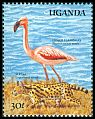 Cl: Lesser Flamingo (Phoenicopterus minor) SG 730 (1989) 70