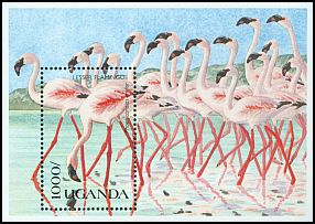 Cl: Lesser Flamingo (Phoenicopterus minor)(Repeat for this country)  SG 848a (1990) 375