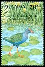 Cl: Purple Swamphen (Porphyrio porphyrio) SG 893 (1991) 65