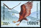 Cl: African Fish-Eagle (Haliaeetus vocifer)(Repeat for this country)  SG 1447 (1995)