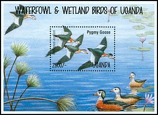 Cl: African Pygmy-goose (Nettapus auritus)(Repeat for this country)  SG 1458a (1995)