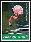 Cl: Caribbean Flamingo (Phoenicopterus ruber)(Out of range) (I do not have this stamp)  new (2014)