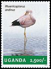 Cl: Andean Flamingo (Phoenicopterus andinus)(Out of range) (I do not have this stamp)  new (2014)