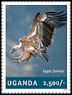 Cl: Eurasian Griffon (Gyps fulvus)(Out of range) (I do not have this stamp)  new (2014)