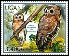 Cl: African Wood-Owl (Strix woodfordii)(I do not have this stamp)  new (2012)  [7/55]