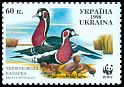 Cl: Red-breasted Goose (Branta ruficollis)(Repeat for this country)  SG 244 (1998)