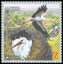 Cl: White Stork (Ciconia ciconia) new (2019)  [11/64]