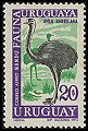 Cl: Greater Rhea (Rhea americana) <<&Ntilde;and&uacute;>>  SG 1415 (1970) 130 [5/36]