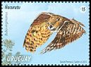 Cl: Great Horned Owl (Bubo virginianus) <<Ñacurutú>> (Repeat for this country)  new (2015)  [10/6]