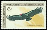 Cl: California Condor (Gymnogyps californianus) SG 1431 (1971) 45