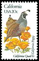 Cl: California Quail (Callipepla californica) SG 1934 (1982) 90