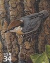 Cl: Brown-headed Nuthatch (Sitta pusilla) SG 4089e (2002) 90 [5/53]