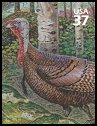 Cl: Wild Turkey (Meleagris gallopavo)(Endemic or near-endemic)  SG 4416g (2005) 90 [3/42]