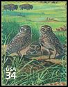 Cl: Burrowing Owl (Athene cunicularia) SG 3975c (2001) 90