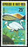 Cl: Intermediate Egret (Egretta intermedia) <<Granedes Aigrettes>>  SG 540 (1979) 120
