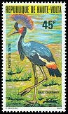 Cl: Black Crowned-Crane (Balearica pavonina) <<Grue couronnee>>  SG 542 (1979) 220