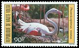 Cl: Greater Flamingo (Phoenicopterus roseus)(Out of range)  SG 701 (1984) 140