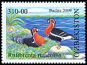 Cl: Red-breasted Goose (Branta ruficollis) SG 654 (2009) 240 [6/11]