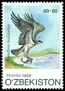 Cl: Osprey (Pandion haliaetus)(Repeat for this country)  SG 218 (1999) 240