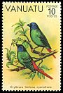 Cl: Blue-faced Parrotfinch (Erythrura trichroa cyanofrons) SG 307 (1981) 35