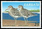 Cl: Sharp-tailed Sandpiper (Calidris acuminata) SG 751 (1997) 45