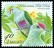 Cl: Red-bellied Fruit-Dove (Ptilinopus greyi) SG 1120c (2012)  [5/19]