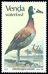 Cl: White-faced Whistling-Duck (Dendrocygna viduata) SG 152 (1987) 110