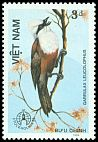 Cl: White-crested Laughingthrush (Garrulax leucolophus) SG 965 (1986) 5