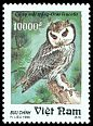 Cl: Northern White-faced Owl (Ptilopsis leucotis)(Out of range)  SG 1935 (1995)