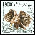 Cl: White-tailed Eagle (Haliaeetus albicilla)(Out of range)  SG 2186 (1998)