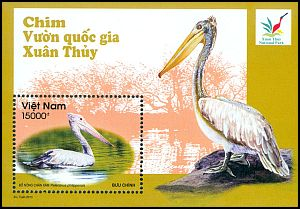 Cl: Spot-billed Pelican (Pelecanus philippensis)(I do not have this stamp)  new (2013)  [8/25]