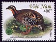 Cl: Orange-necked Partridge (Arborophila davidi) SG 2406 (2001)  [1/9]