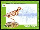 Cl: Grey-headed Lapwing (Vanellus cinereus) new (2013)  [5/7]