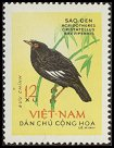 Cl: Crested Myna (Acridotheres cristatellus) SG 278 (1963) 80 [3/4]