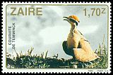 Cl: Temminck's Courser (Cursorius temminckii) <<Courvite de Temminck>>  SG 1137 (1982) 45