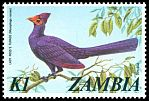 Cl: Ross's Turaco (Musophaga rossae) SG 238 (1974) 350