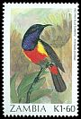 Cl: Anchieta's Sunbird (Anthreptes anchietae) SG 495 (1987) 200
