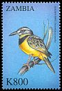 Cl: Golden Pipit (Tmetothylacus tenellus)(Out of range and no other stamp) (not catalogued)  (2000)