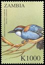 Cl: Chestnut-backed Jewel-babbler (Ptilorrhoa castanonota)(Out of range and no other stamp) (not catalogued)  (2000)