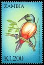 Cl: Orange-breasted Sunbird (Anthobaphes violacea)(Out of range and no other stamp) (not catalogued)  (2000)