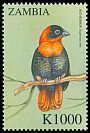 Cl: Red Bishop (Euplectes orix)(not catalogued)  (2000)