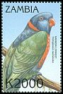 Cl: Rainbow Lorikeet (Trichoglossus haematodus)(Out of range) (not catalogued)  (2000)