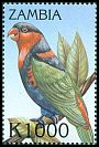 Cl: Black-capped Lory (Lorius lory)(Out of range) (not catalogued)  (2000)
