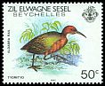 Cl: White-throated Rail (Dryolimnas cuvieri) <<Tyomityo>>  SG 59 (1983) 50
