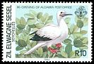 Cl: Red-footed Booby (Sula sula) SG 82 (1984) 225