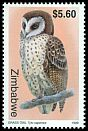 Cl: African Grass-Owl (Tyto capensis) SG 989 (1999)