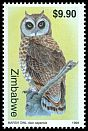 Cl: Marsh Owl (Asio capensis) SG 991 (1999)